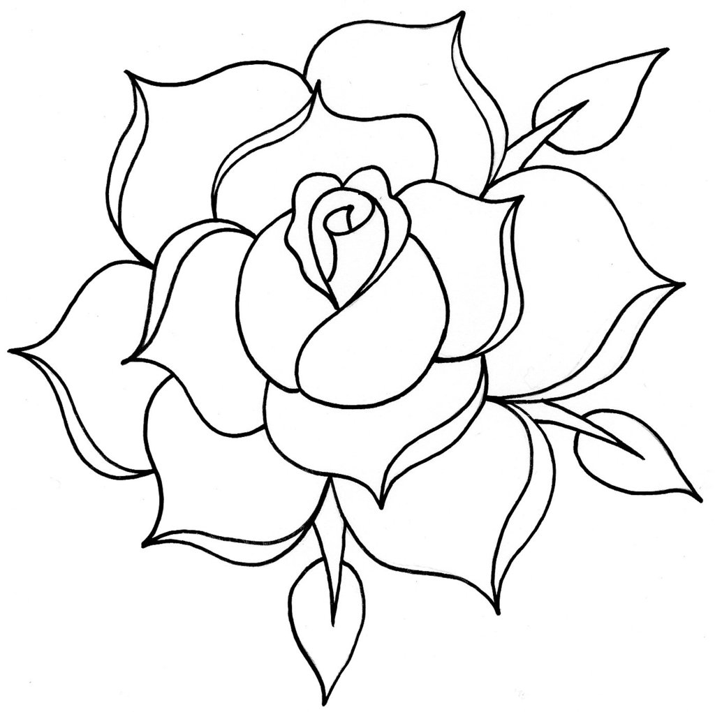Images For Traditional Rose Line Drawing