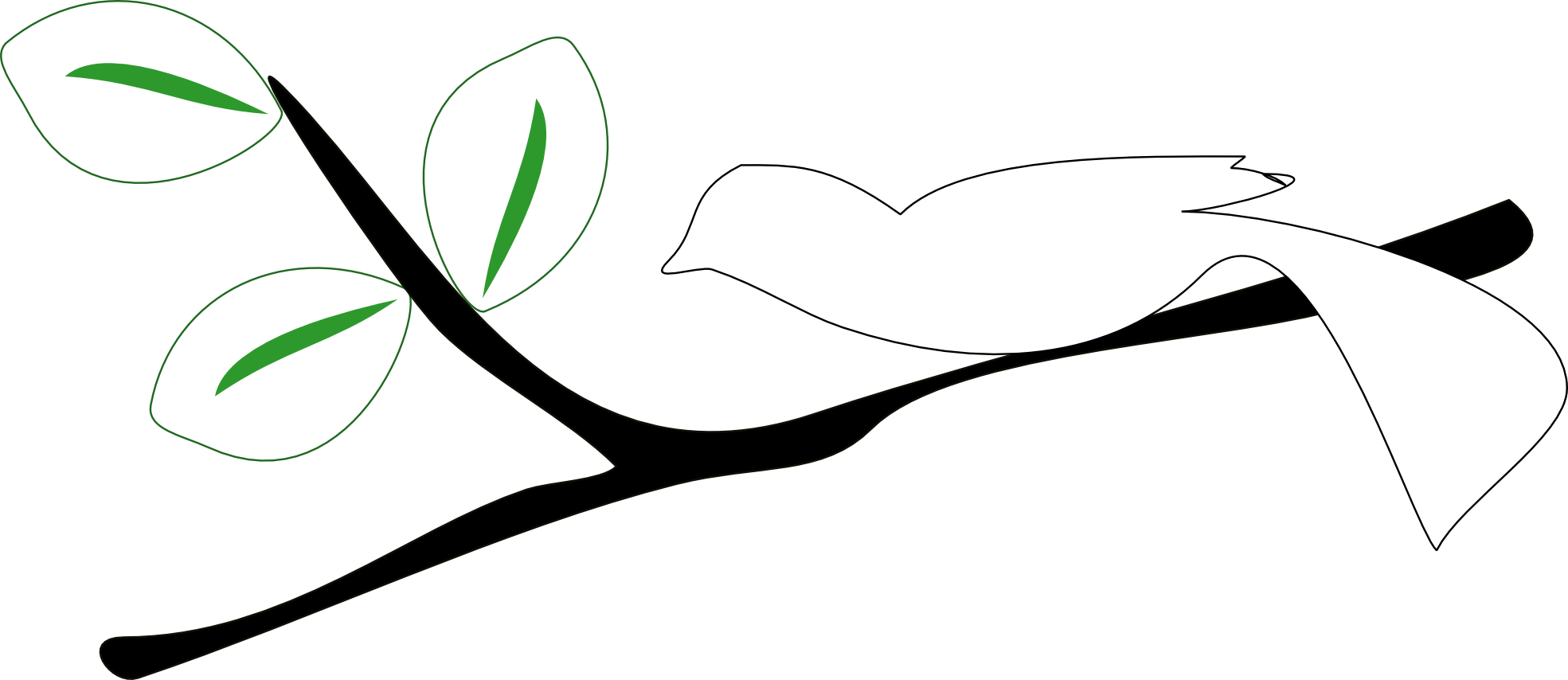 Free Images Of Tree Branches Download Free Clip Art Free