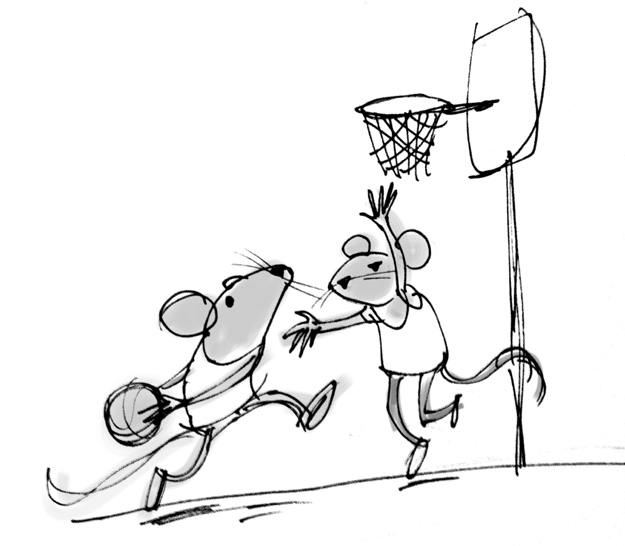 Free Basketballl Drawings Download Free Clip Art Free Clip Art On Clipart Library