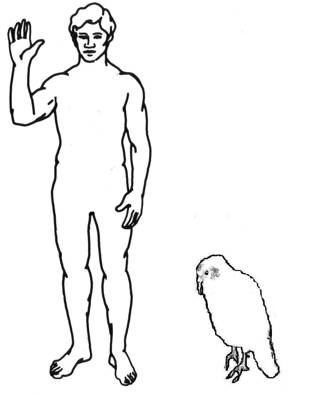 Standing Person Blank Template