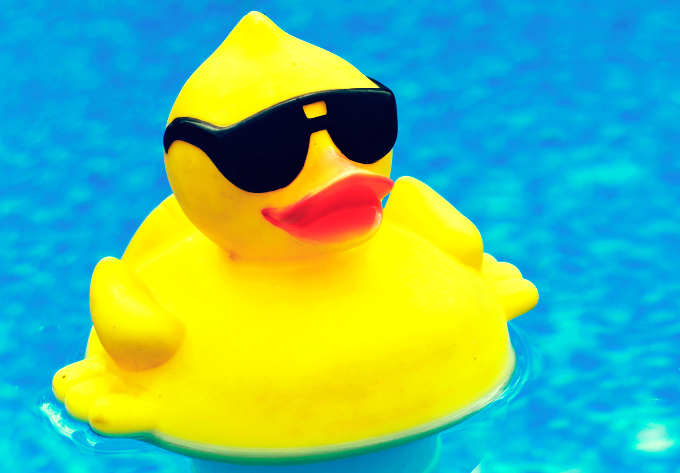 Free Rubber Duck Download Free Clip Art Free Clip Art On