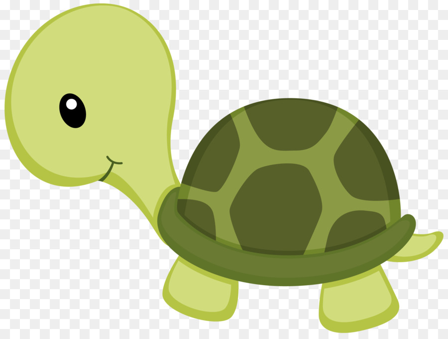 Turtle Drawing Clip Art Under Sea Png Download 900 675 Free Transparent Turtle Png Download Clip Art Library