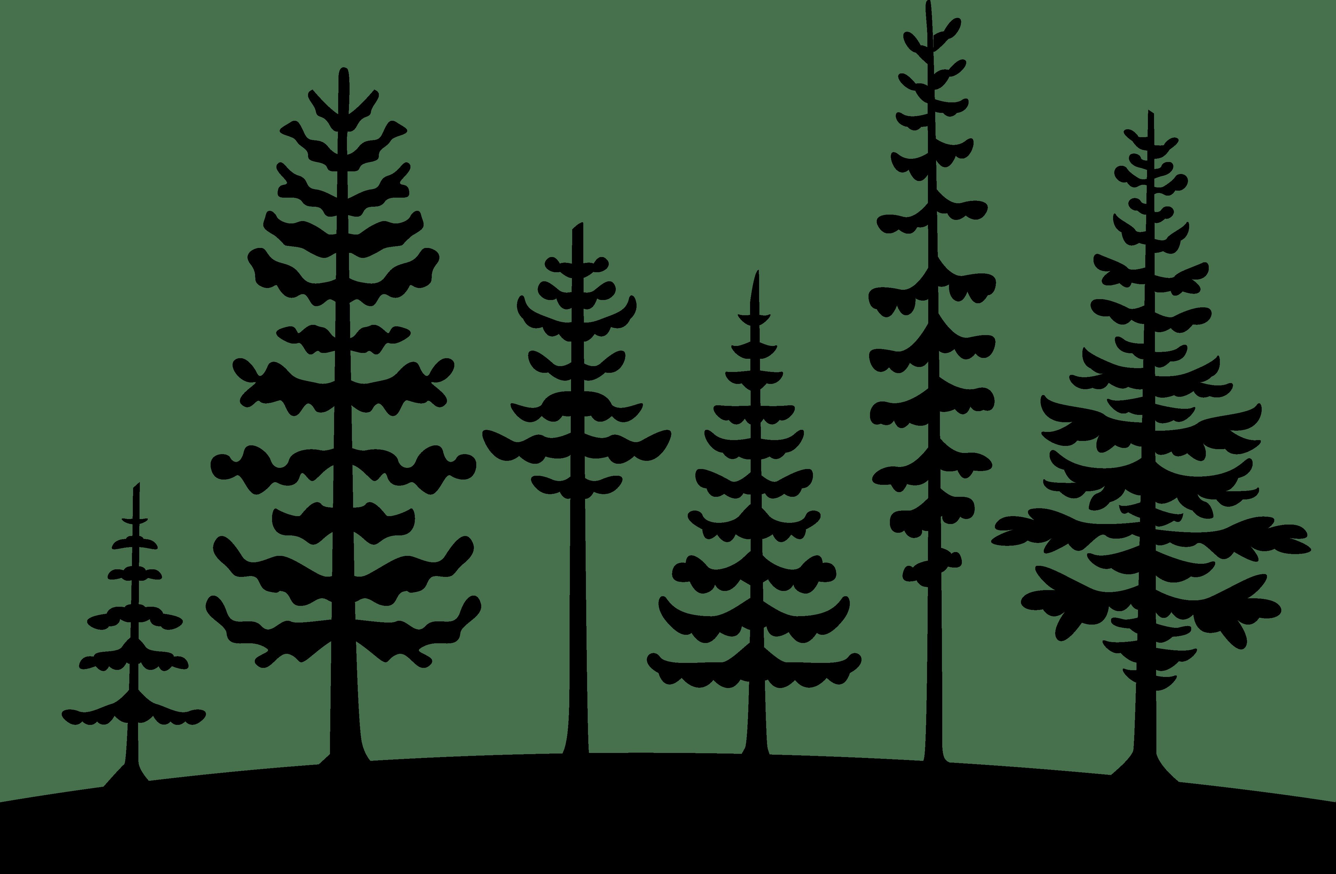 Tree Pine Clip Art Cedrus Libani Vector Graphics