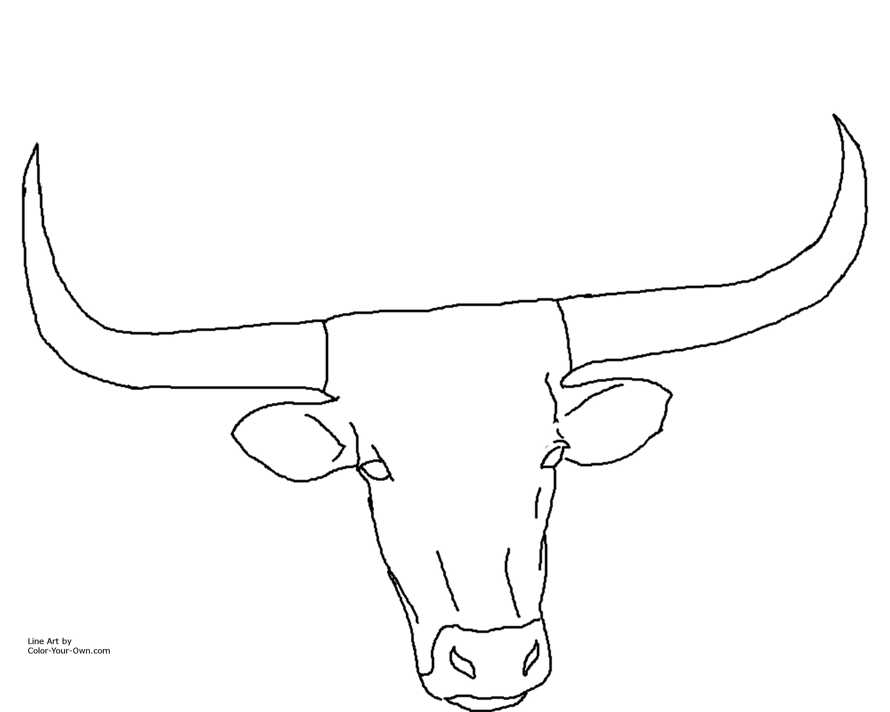 Free Steer Head Cliparts Download Free Clip Art Free
