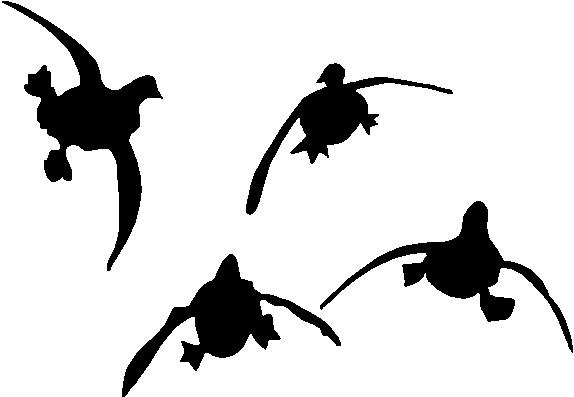 Duck Flying Clipart