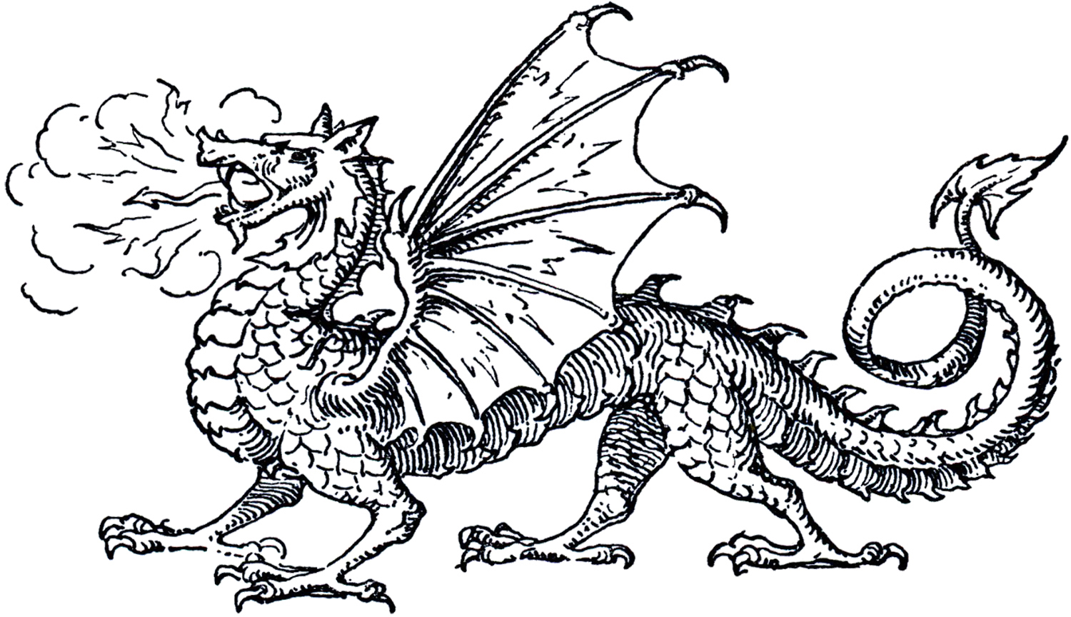 Free Dragon Book Cliparts Download Free Clip Art Free