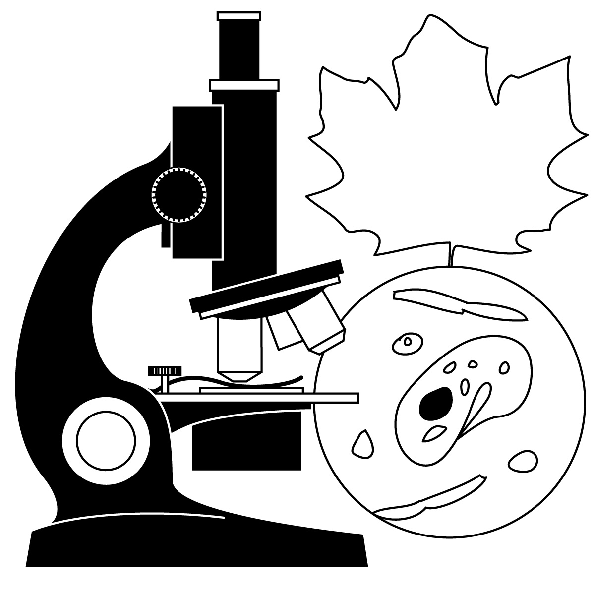 Science Class Clipart Black And White