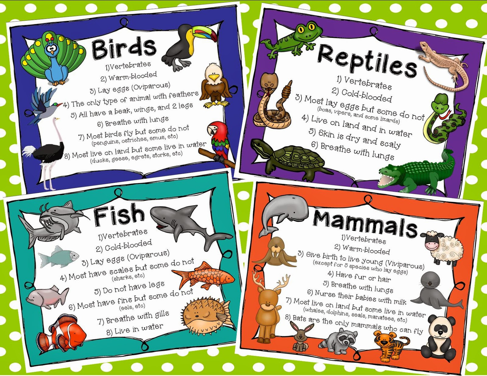 Free Animal Habitat Cliparts Download Free Clip Art Free