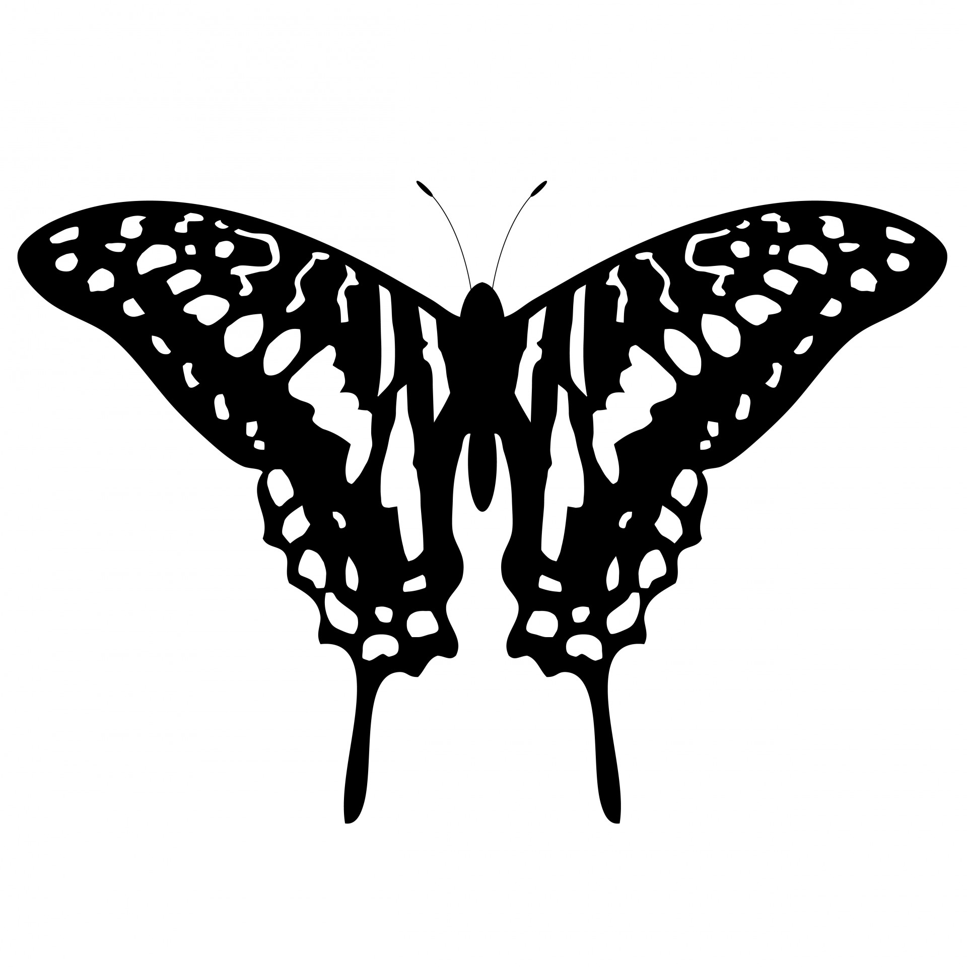 Free Butterfly Silhouette Cliparts Download Free Clip Art