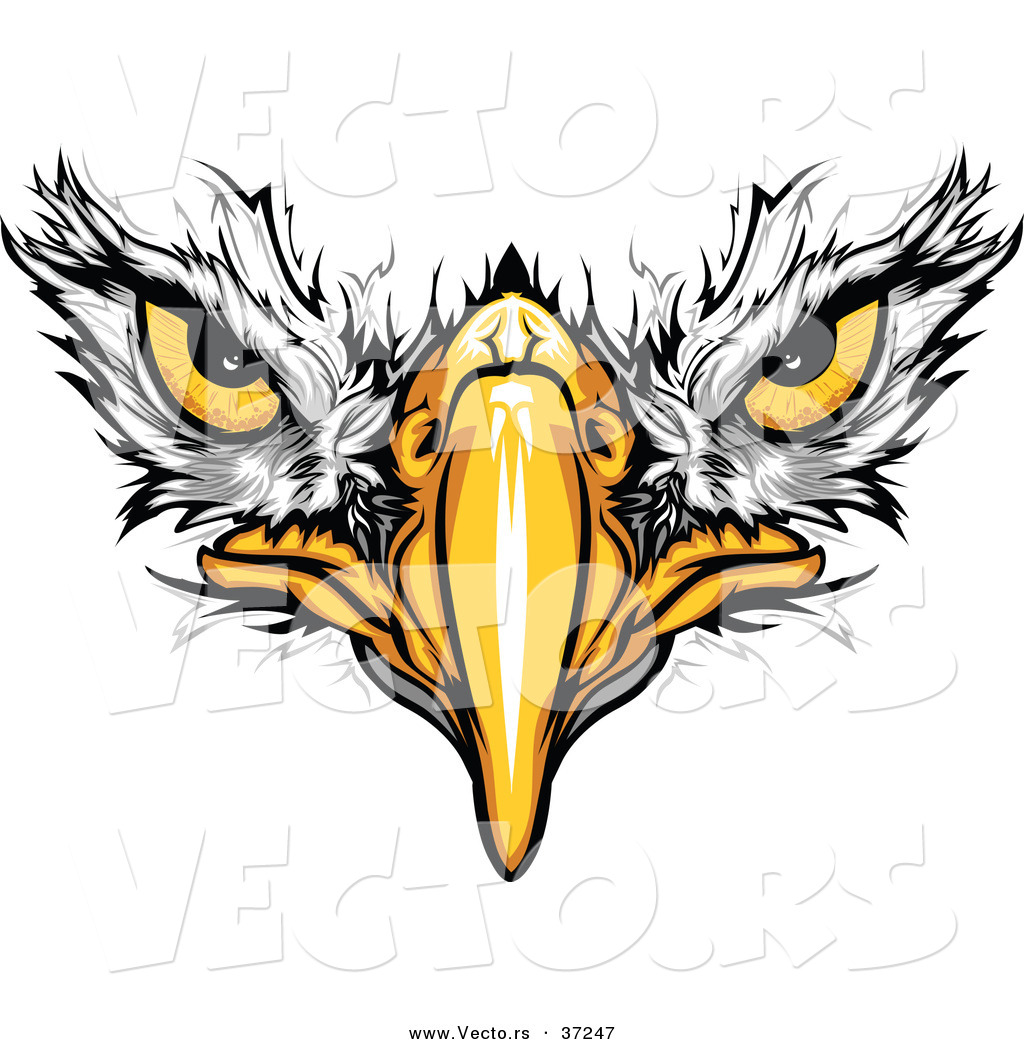 Free Football Eagle Cliparts Download Free Clip Art Free