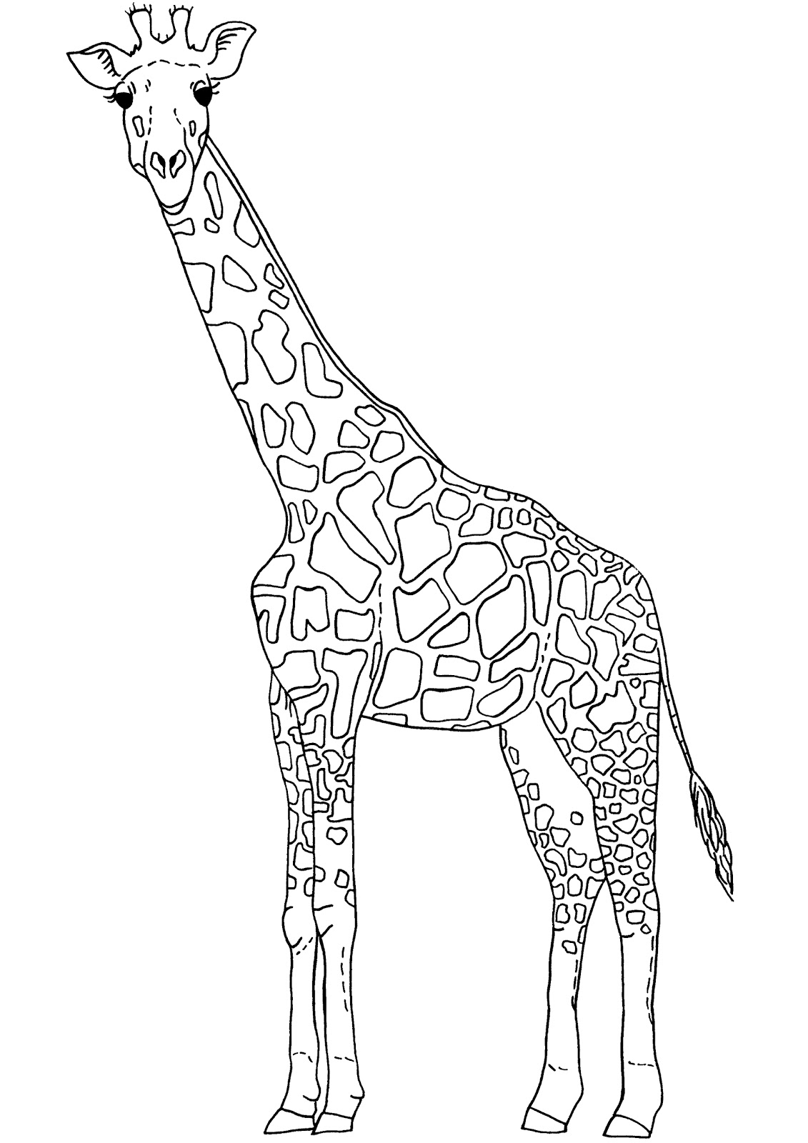 Free Outline Giraffe Cliparts Download Free Clip Art Free Clip Art On Clipart Library