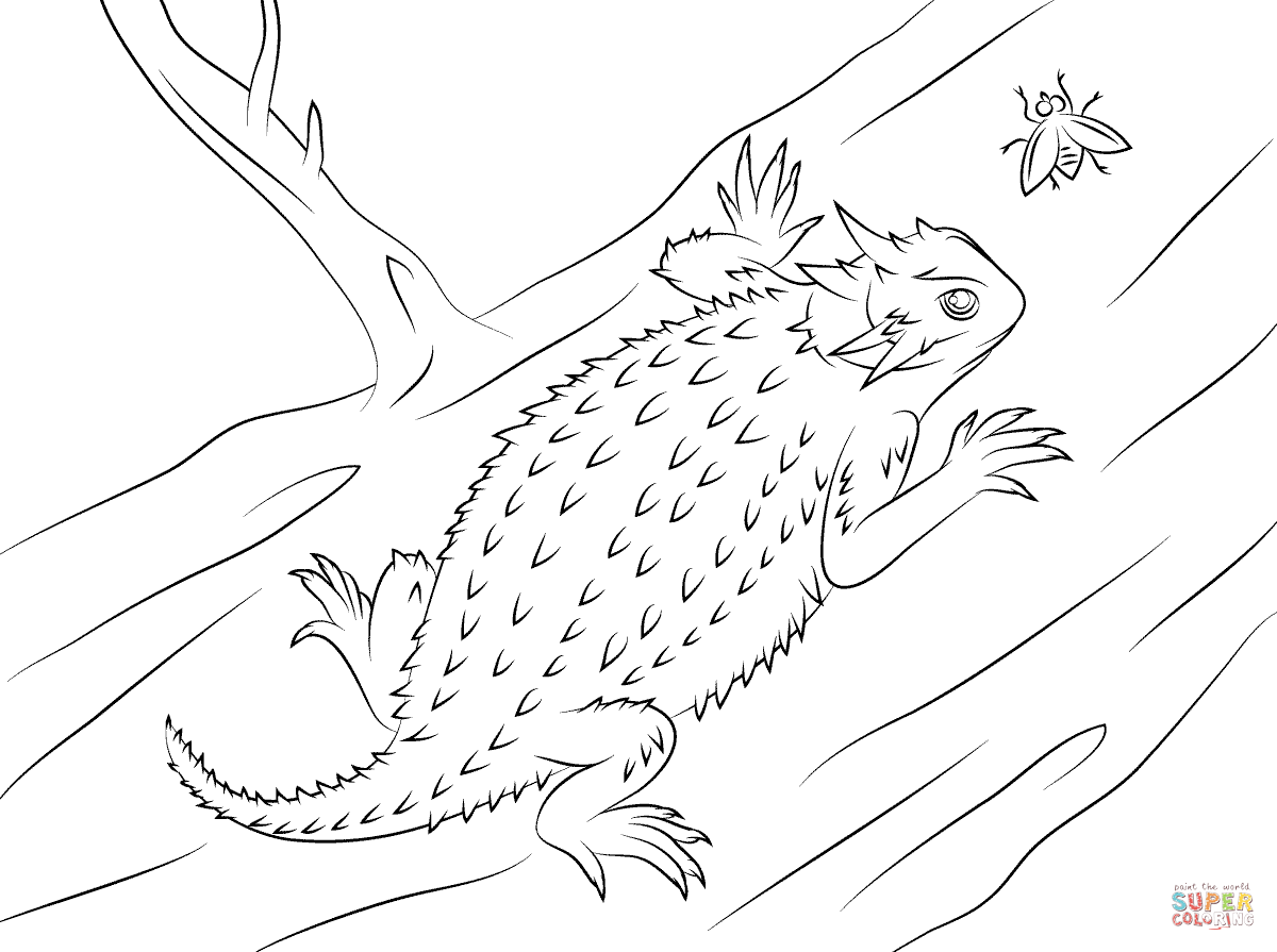 Free Horned Lizard Cliparts Download Free Clip Art Free