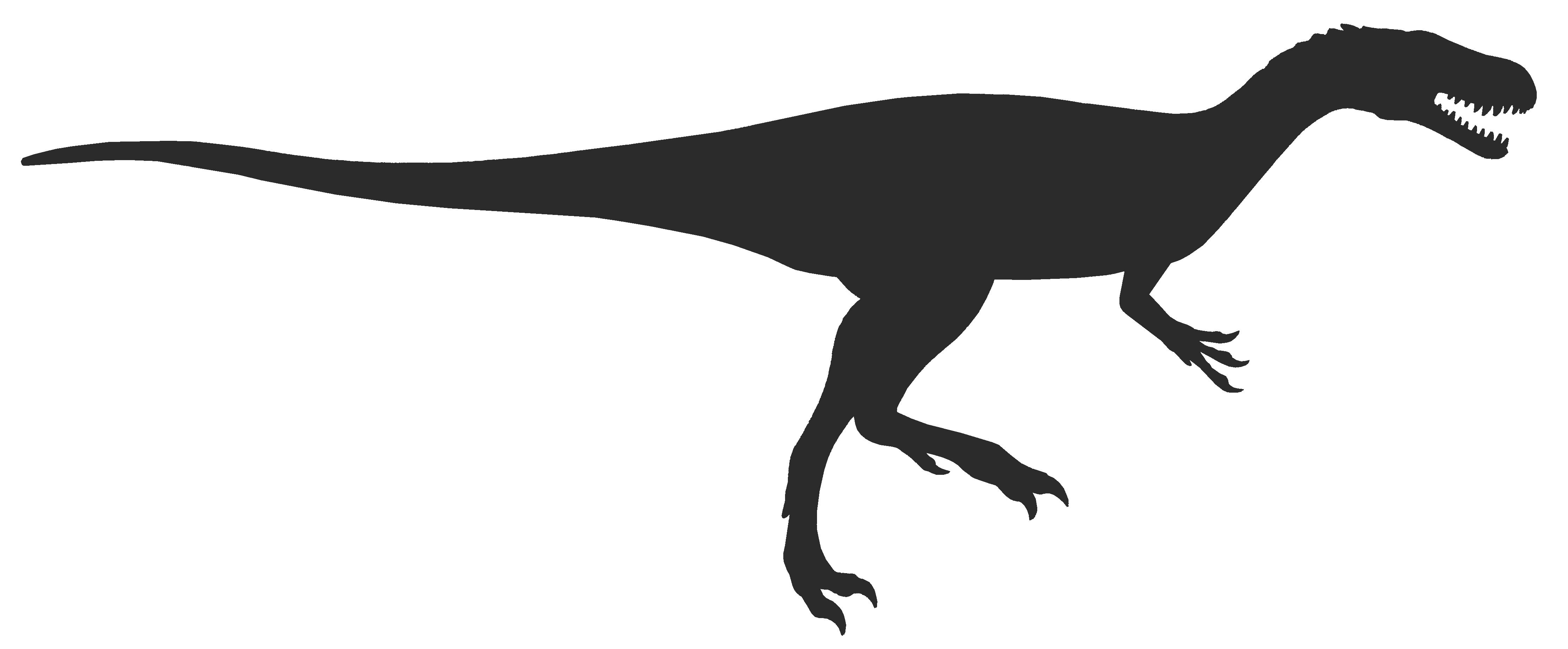 Free Dinosaur Tail Cliparts Download Free Clip Art Free