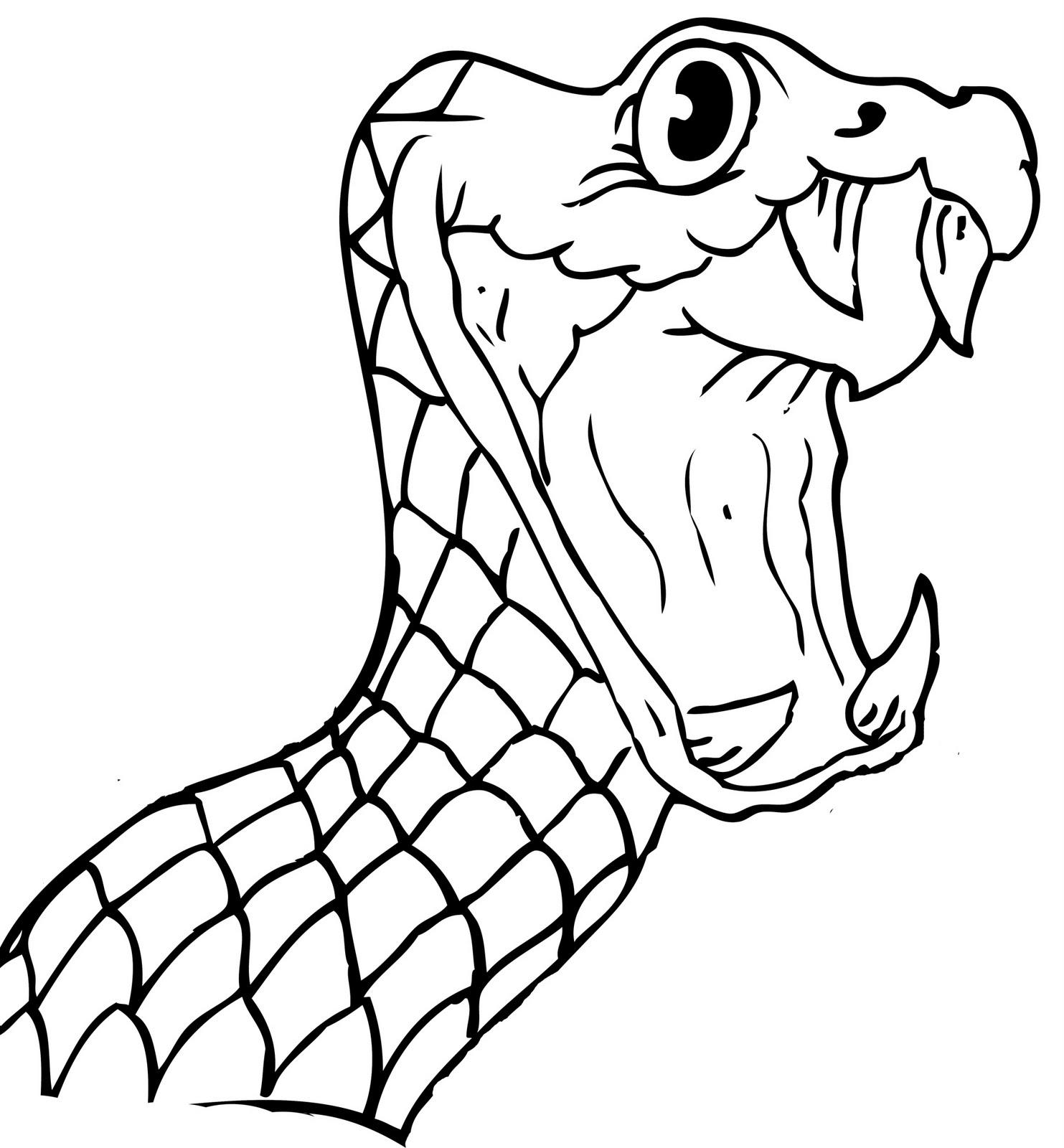 Snake Face Clipart