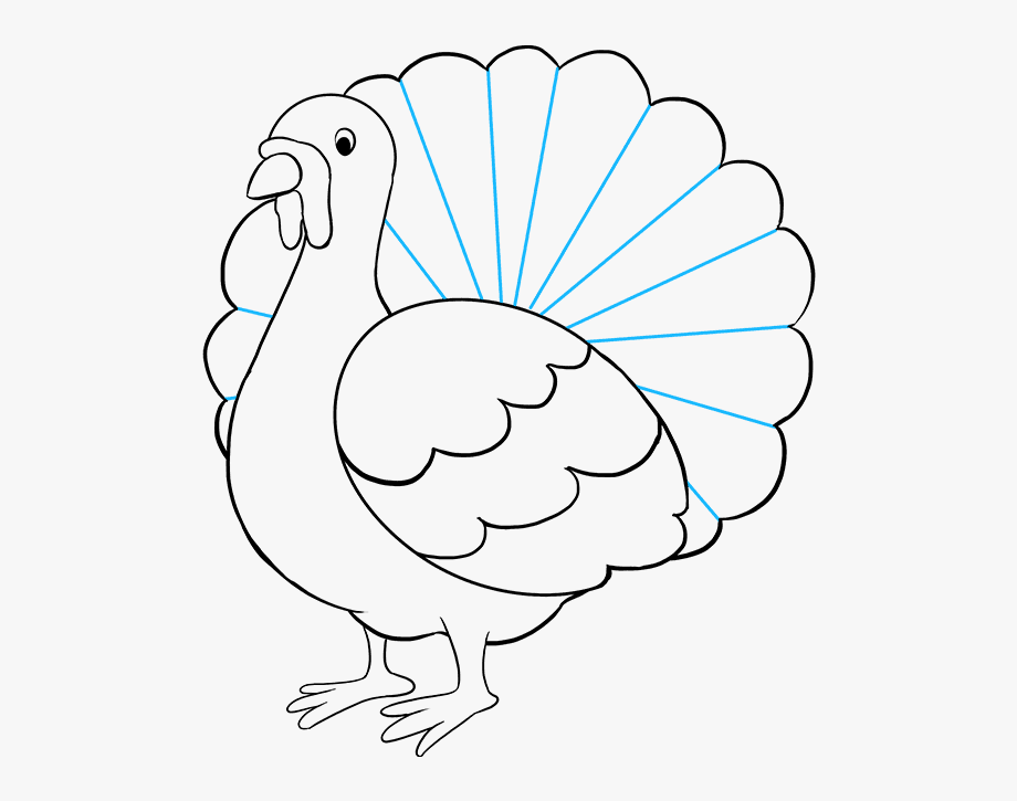 Free Turkey Drawing Cliparts Download Free Clip Art Free Clip Art On Clipart Library