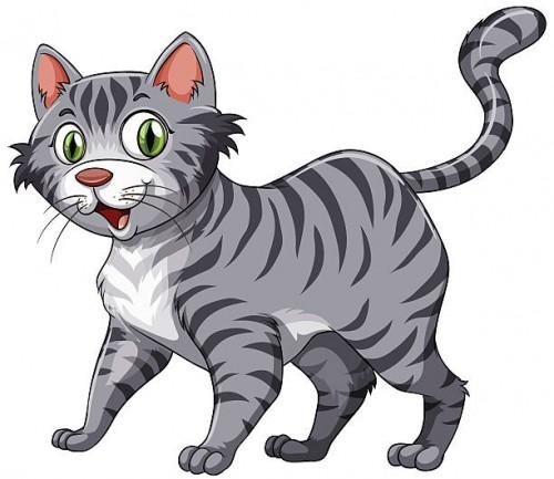 Gray Cat Clipart