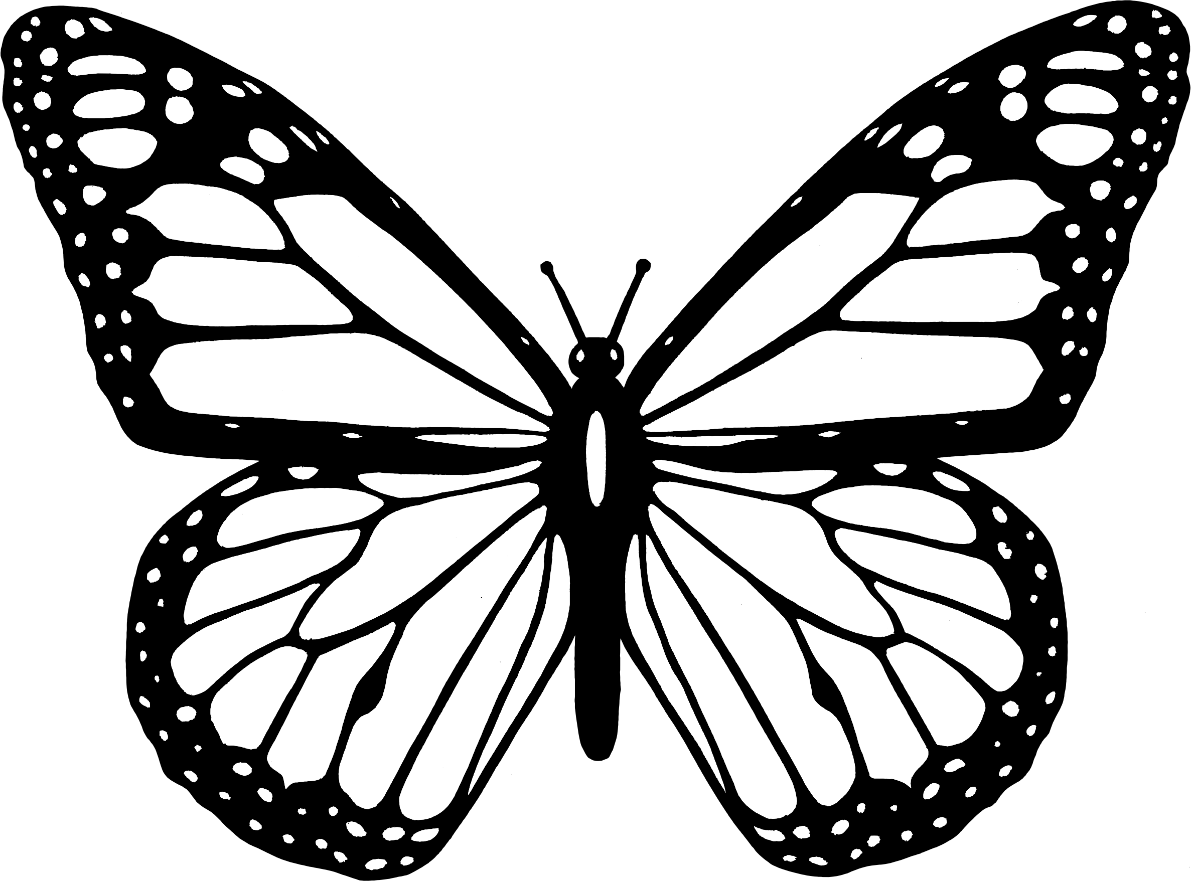 Black And White Butterfly Free Download Clip Art Free Clip