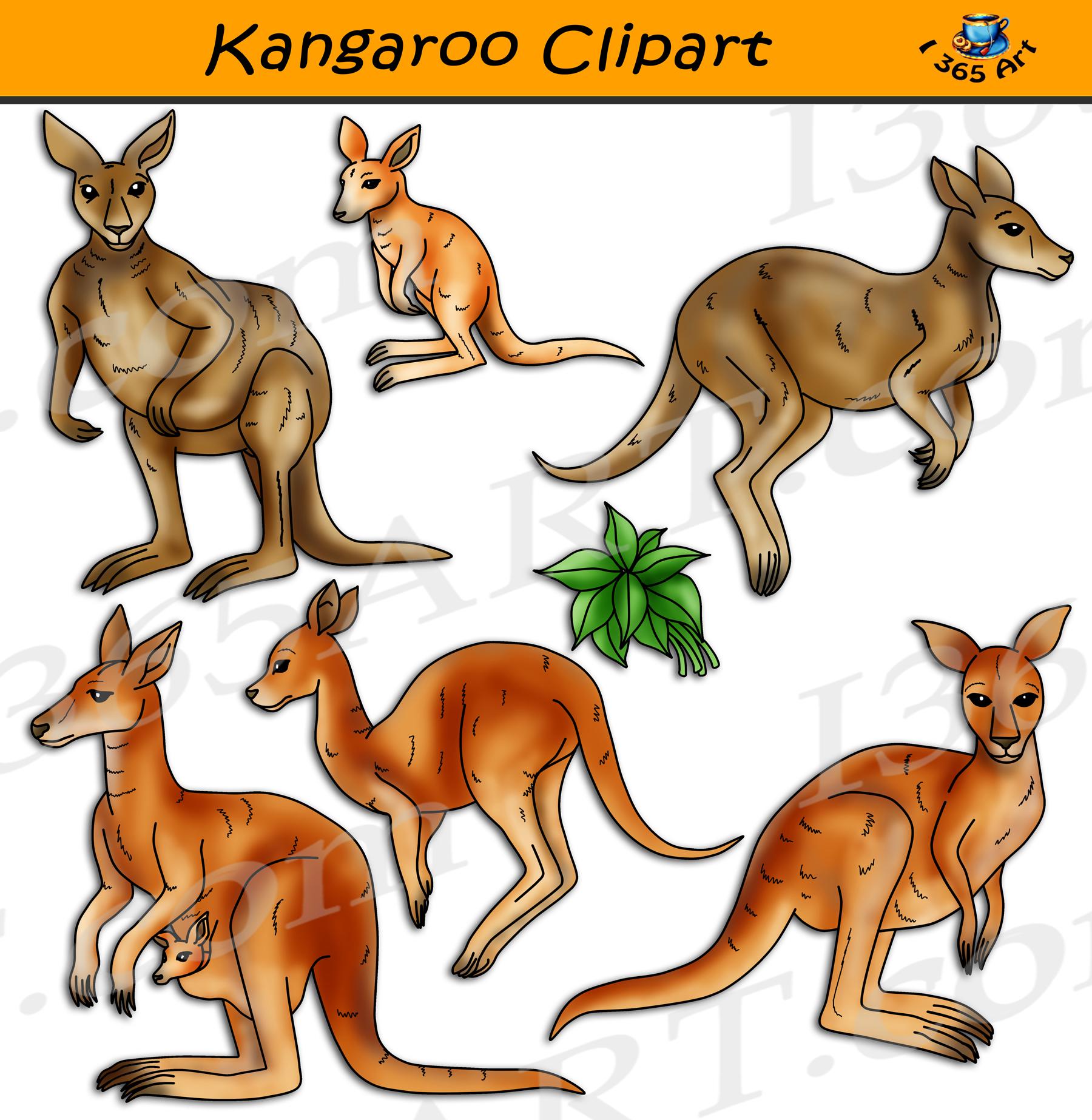 Kangaroo Clipart Set Graphics Download