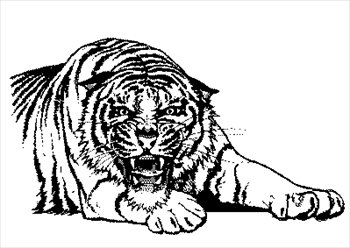 Free Tigers Clipart Graphics Images And Photos 2 Cliparting Com