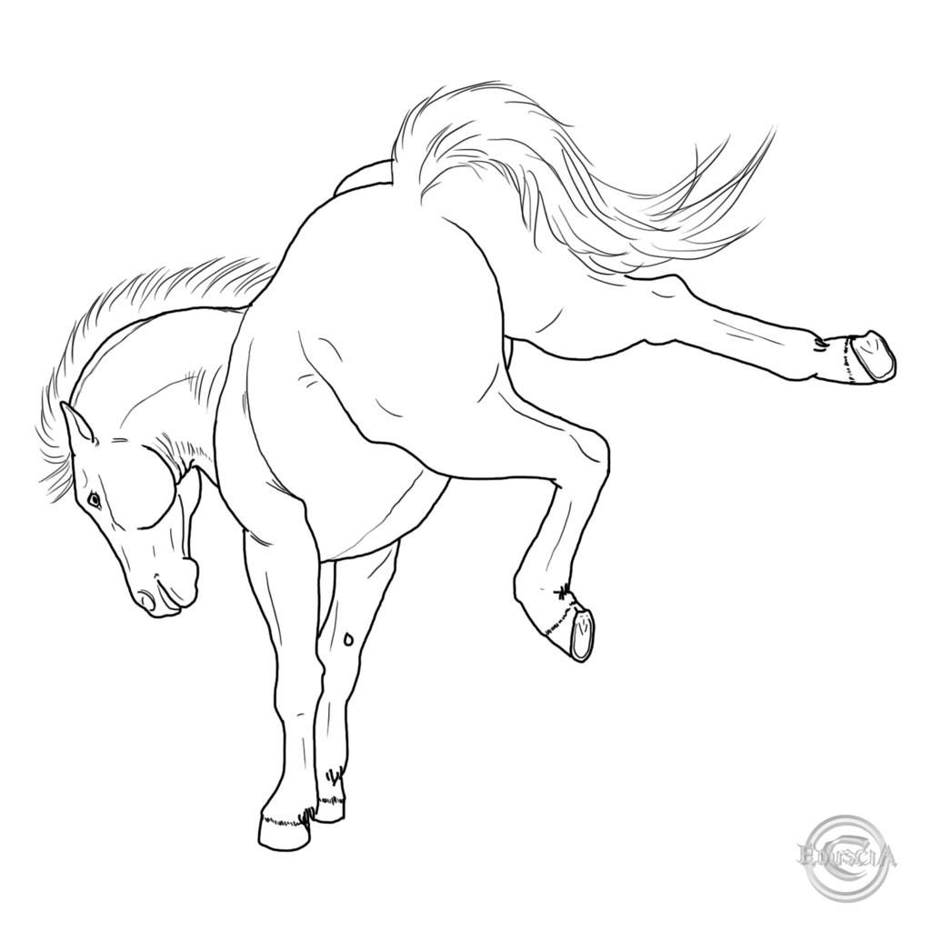 Cartoon Pictures Bucking Horse Engine Wiring Diagram Images