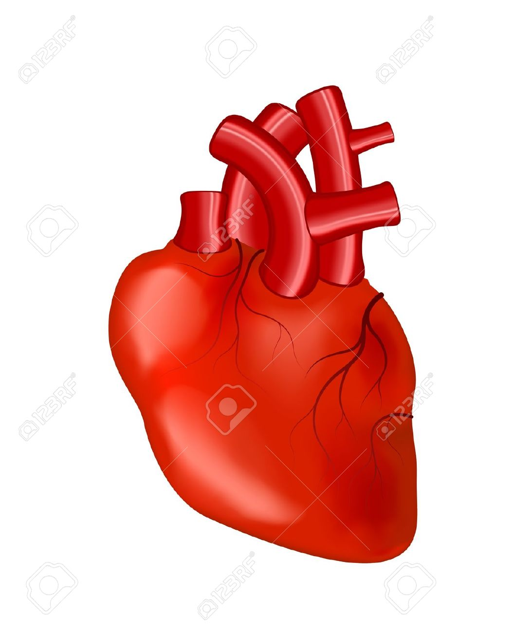 Best Real Heart Clipart