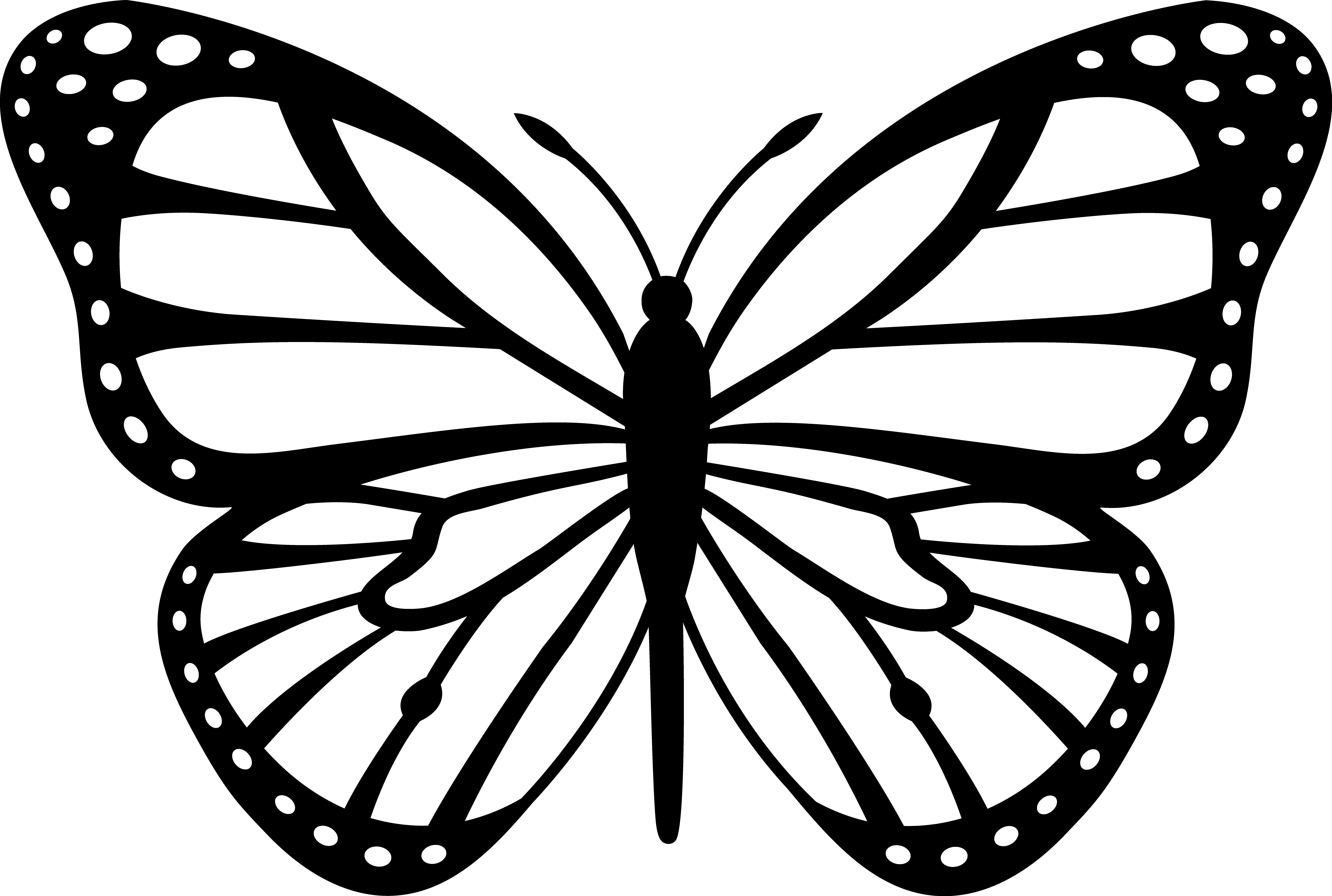 Black And White Butterfly Clip Art Coloring Page For Kids