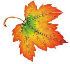Image result for clipart of falling autumn leaf