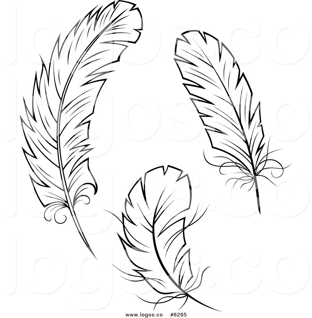 Peacock Feather Clipart Free Stock Photo Public Domain