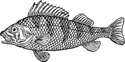 Fish Fry Clip Art Vector Fish Fry Graphics Clipart Me