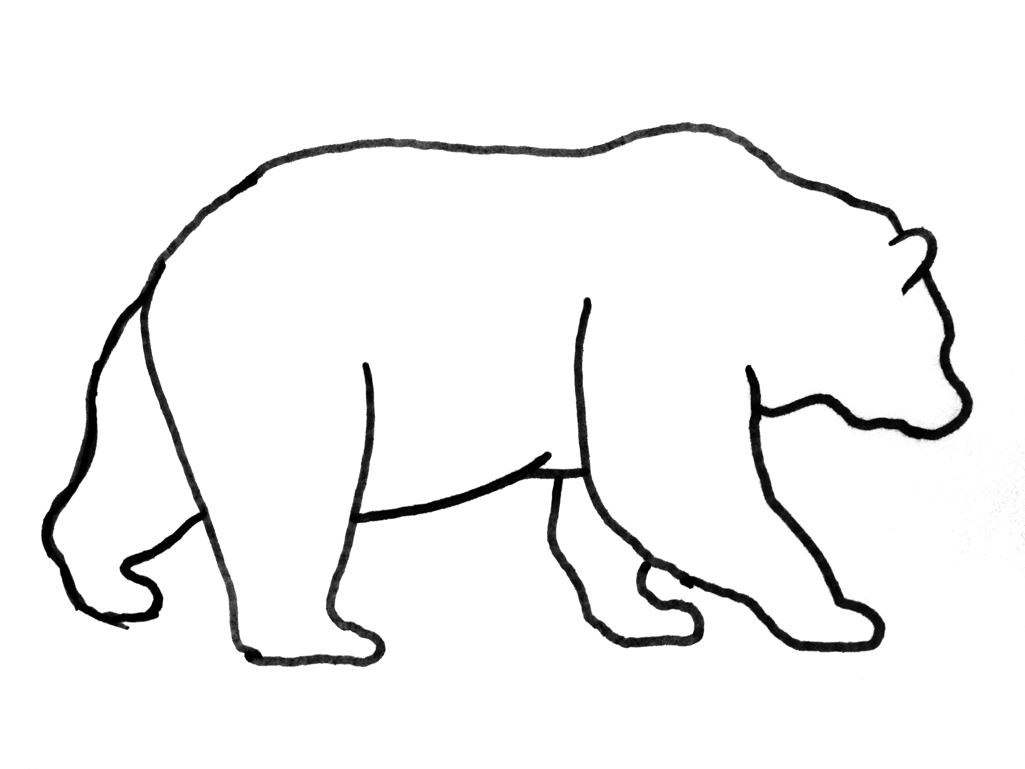 Grizzly Bear Pencil Drawing