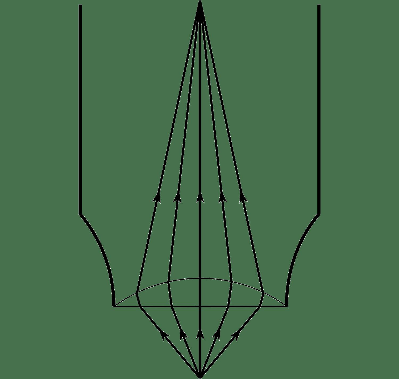 Light Microscope Drawing