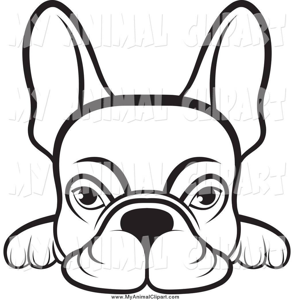 Animal Clipart To Color