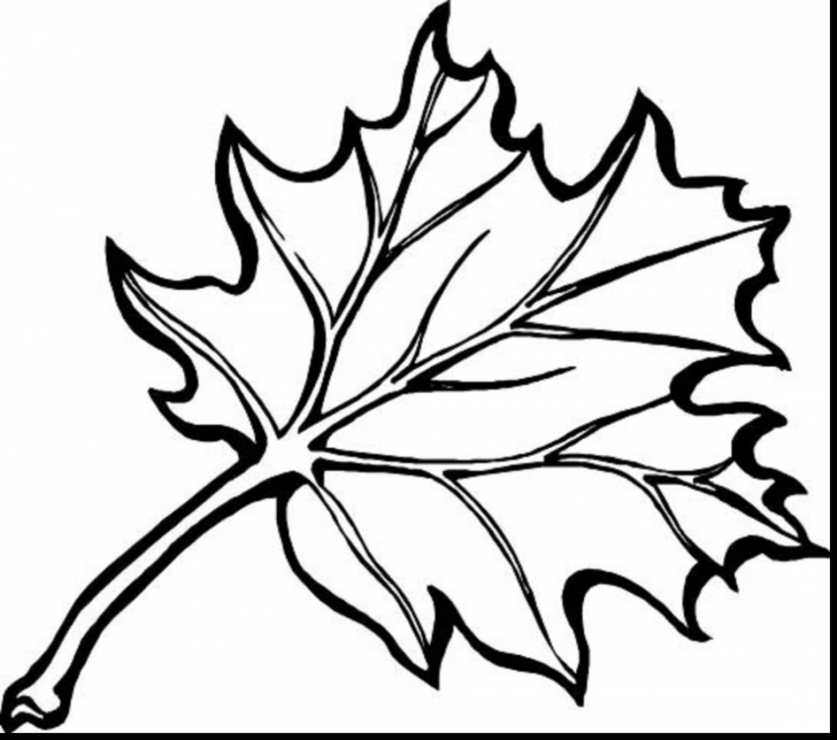 Autumn Clipart Black And White