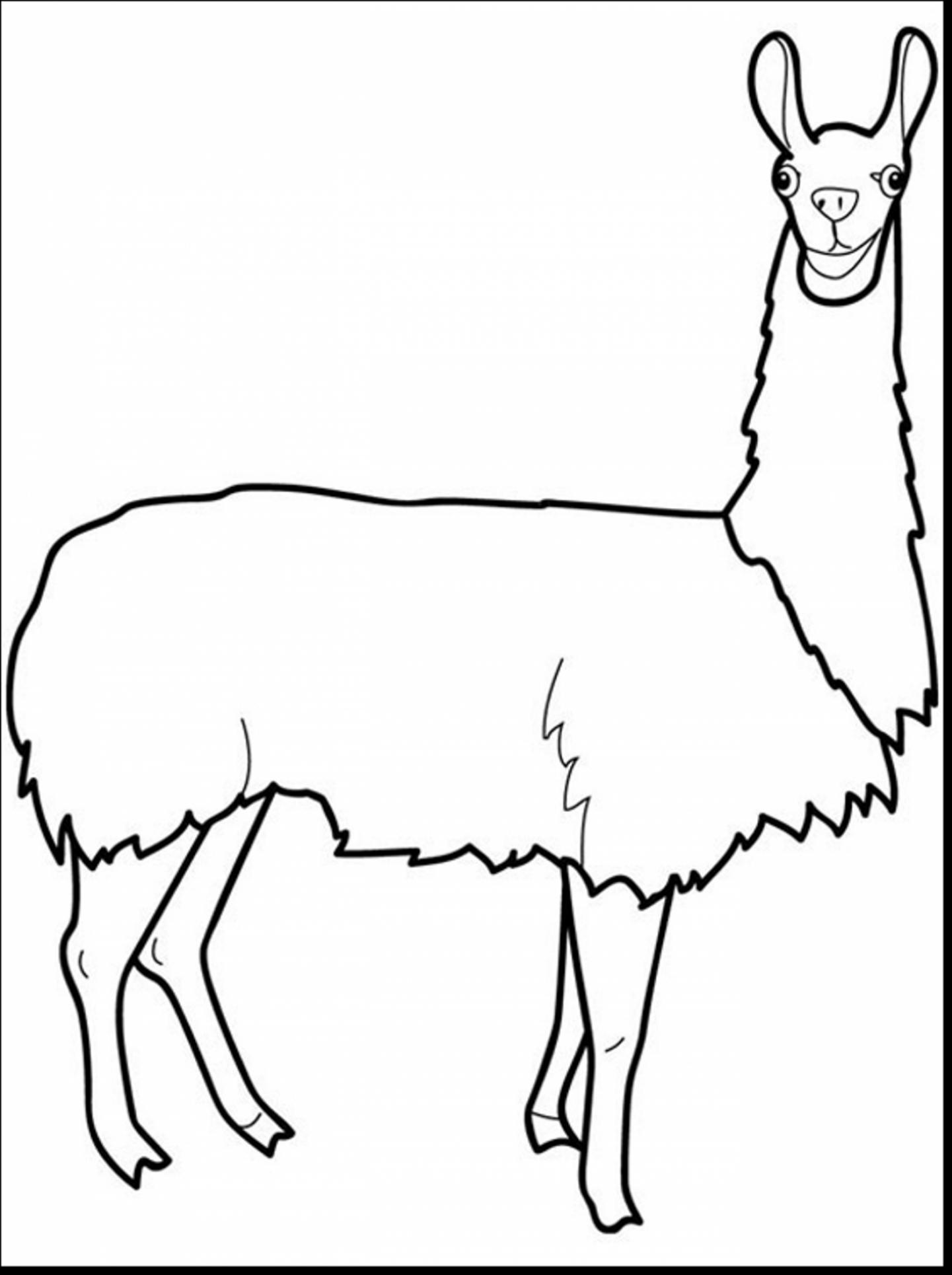 Baby Llama Clipart
