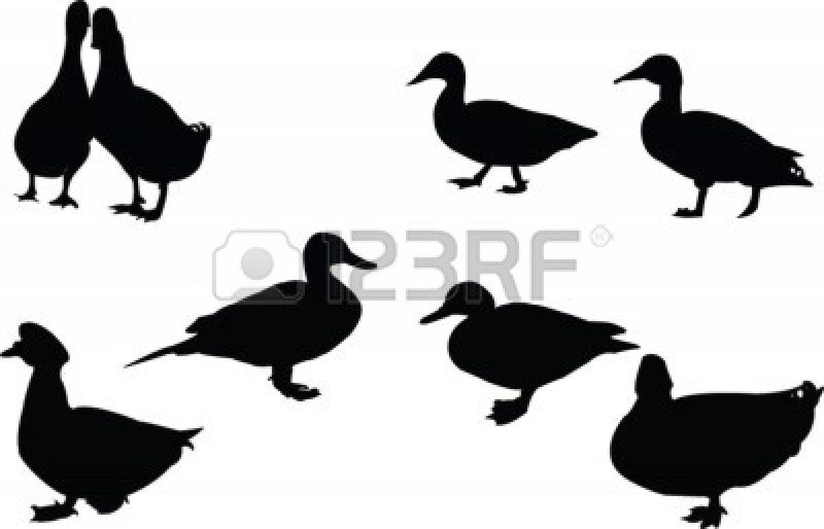 Bird Hunting Clipart