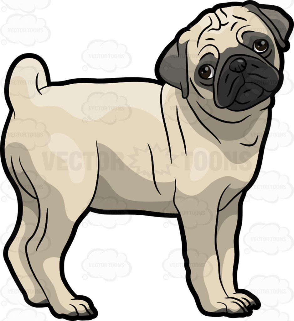 Black Pug Cliparts   Free download on ClipArtMag (939 x 1024 Pixel)