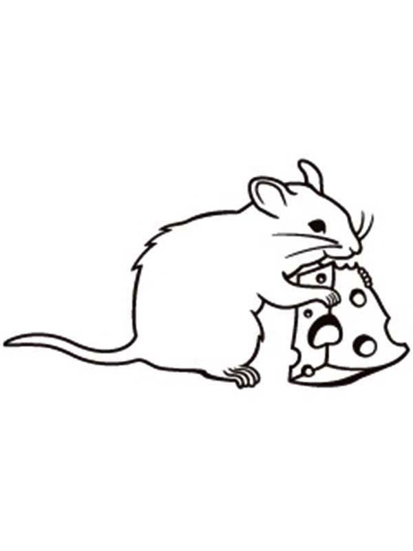 cute rat drawing  free download on clipartmag