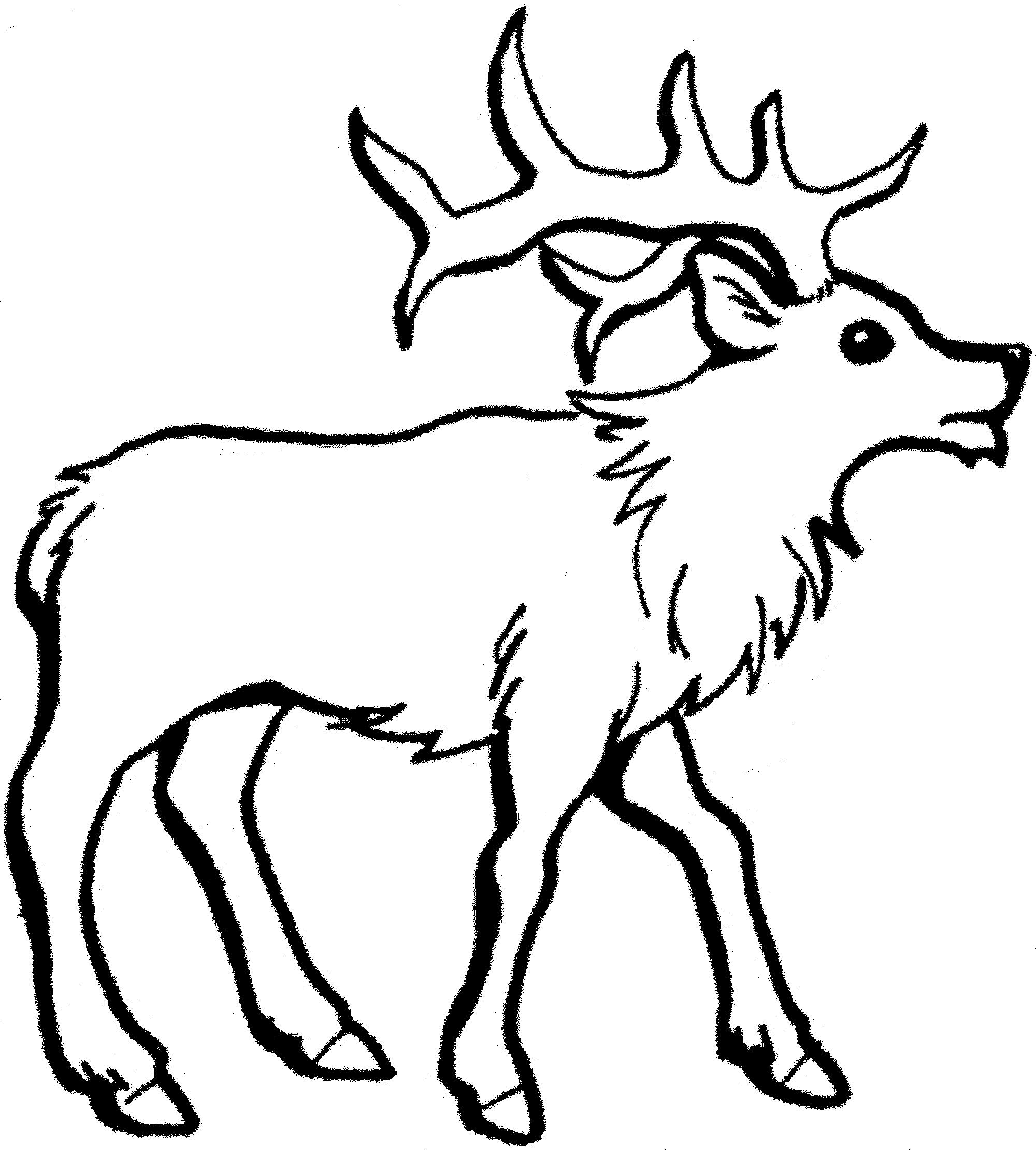 Deer Coloring Pages