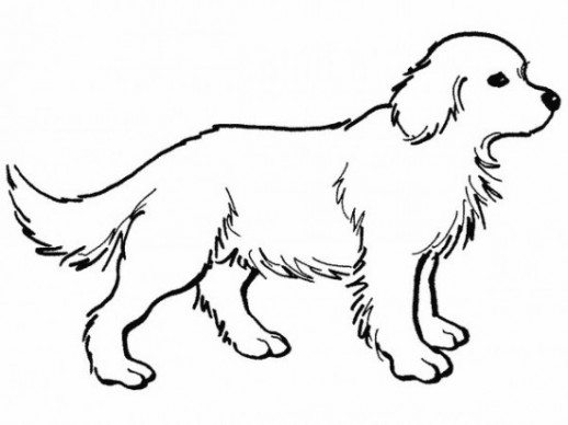 coloring pages dog # 5