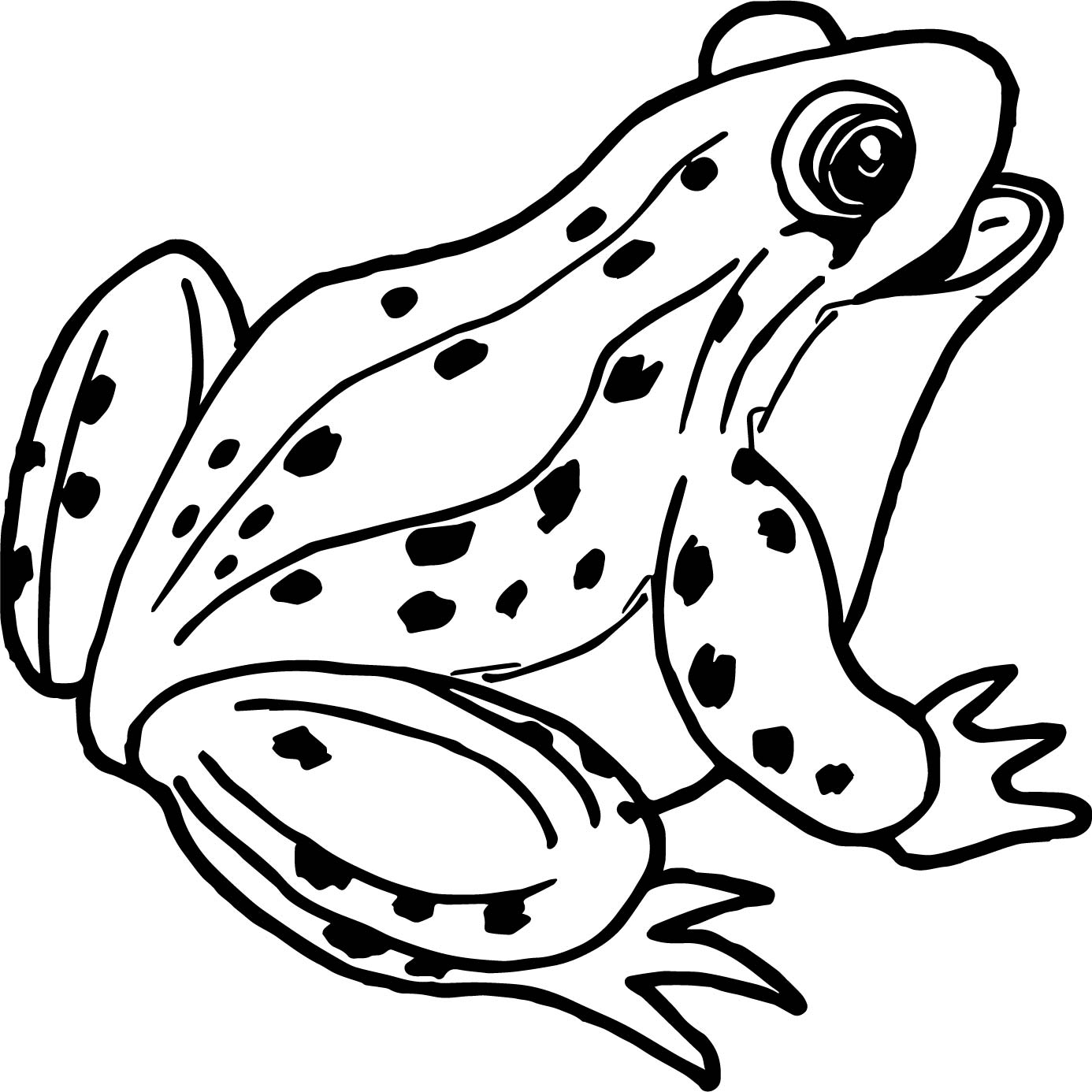 Frog Outline