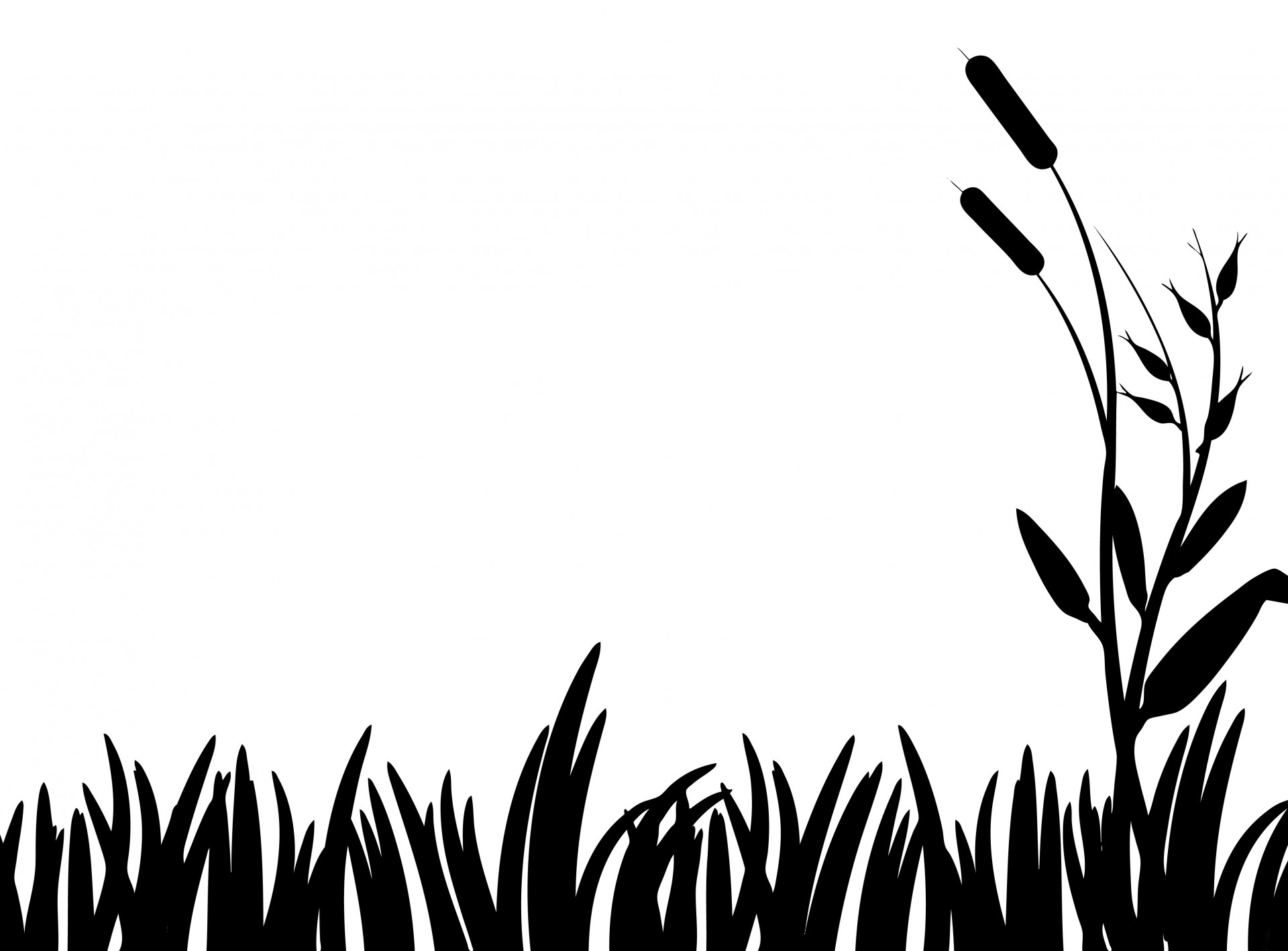 Grass Clipart Free