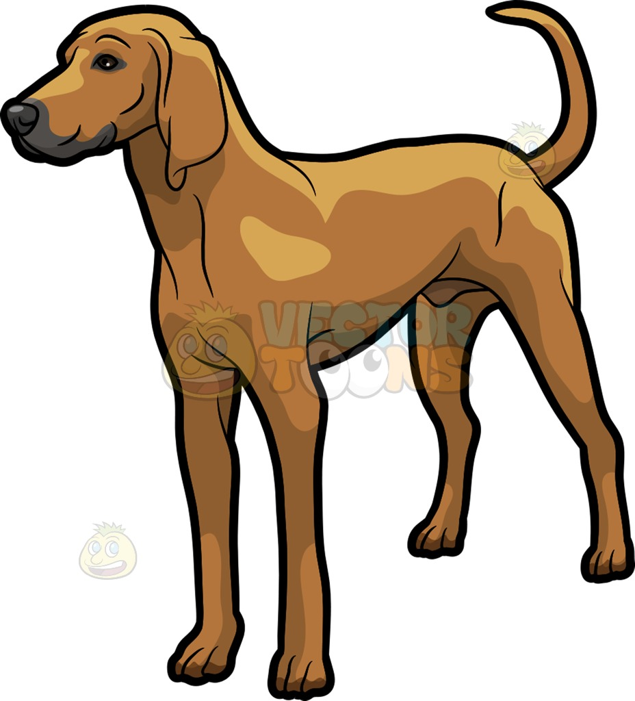 Hound Dog Clipart | Free download on ClipArtMag (928 x 1024 Pixel)