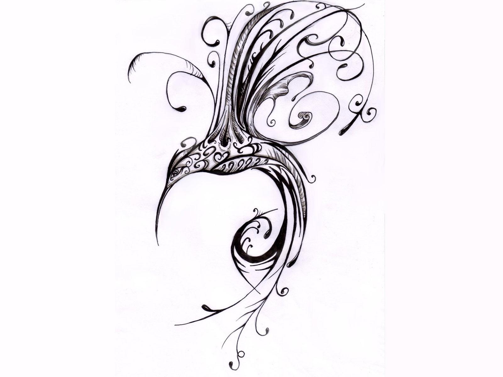 Hummingbird Drawings Free