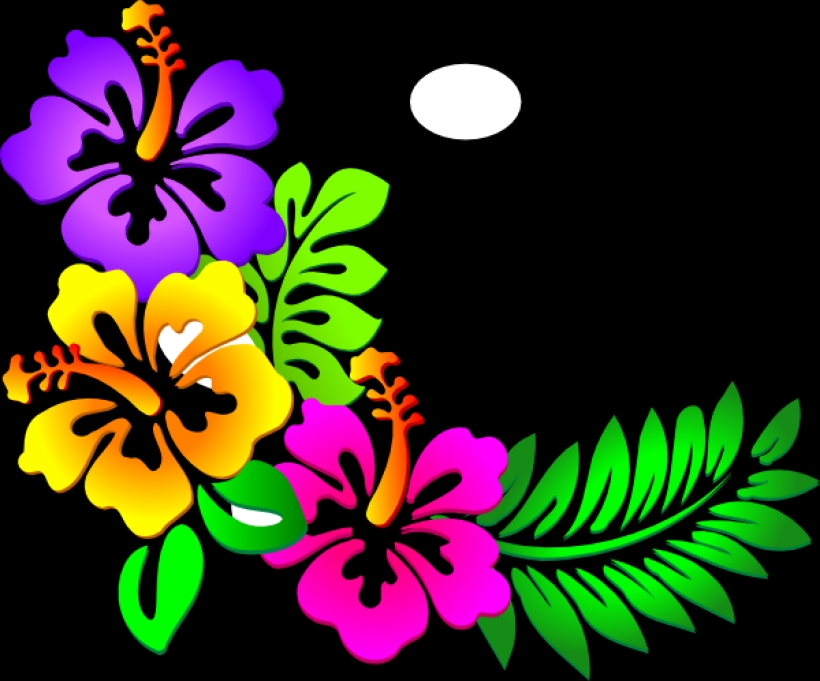 Luau Flowers Clipart | Free download on ClipArtMag (820 x 681 Pixel)