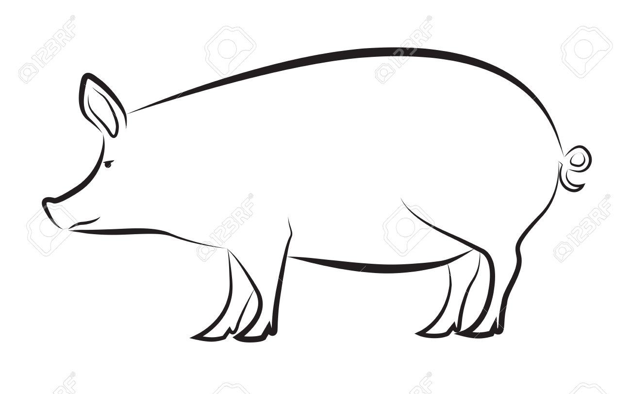 Outline Of A Pig