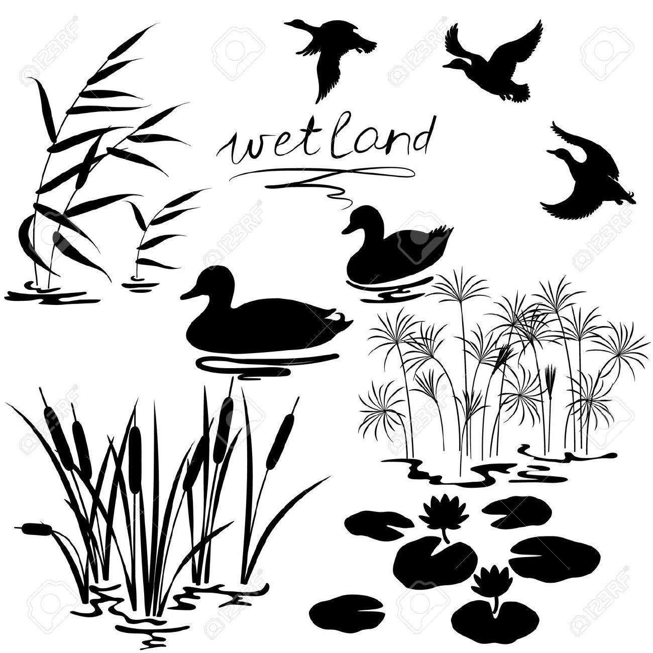 Pond Cliparts Black