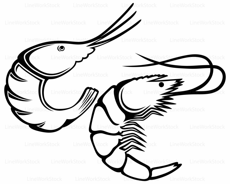 Shrimp Boil Clipart