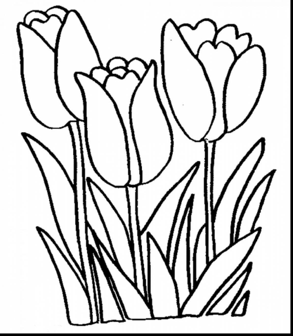 Spring Flowers Black And White Clipart