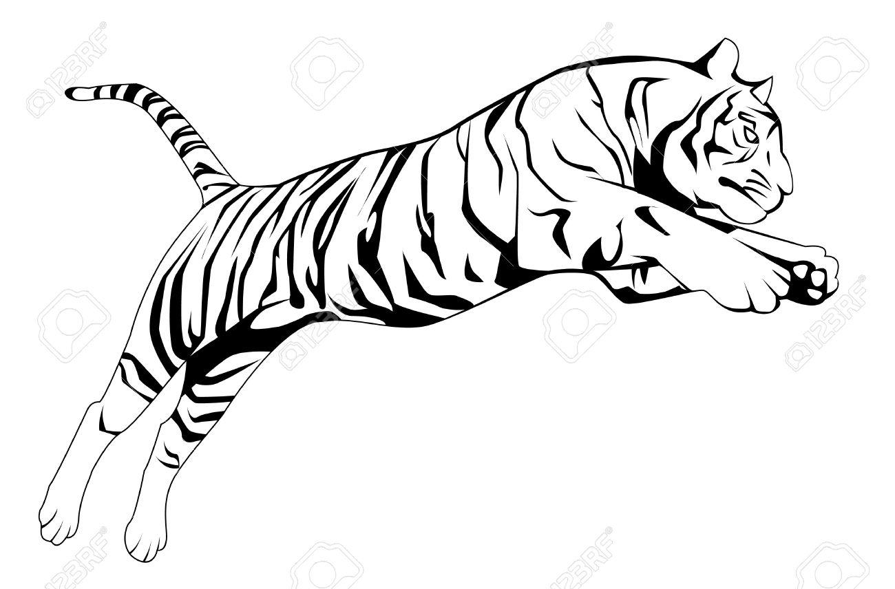 Tiger Eyes Drawing