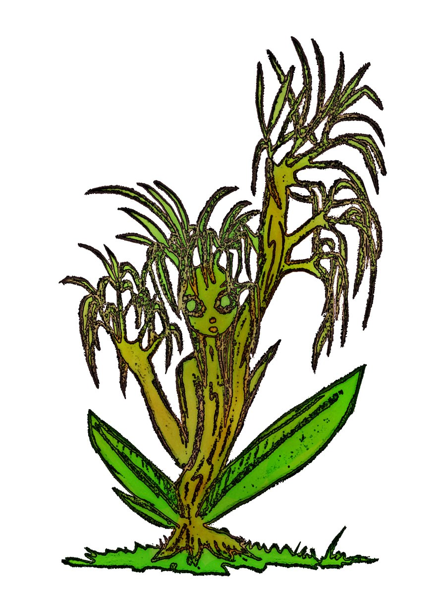 Weed Plant Drawing Free Download Best Weed Plant Drawing